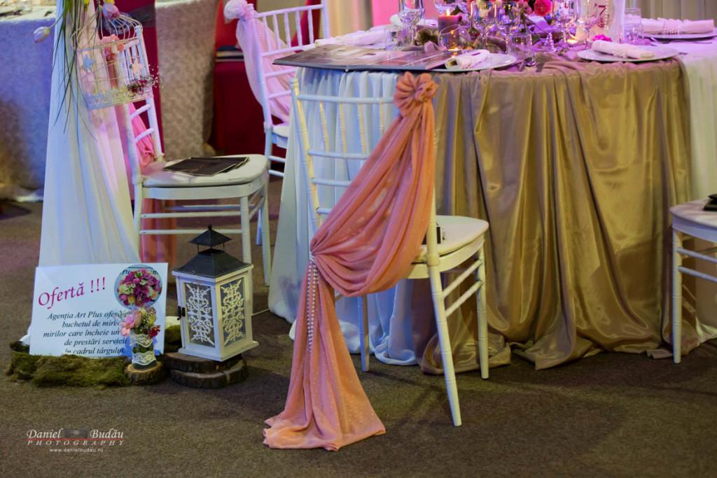 Fotografii targ nunta Deva Shooping City Auchan 2016-44