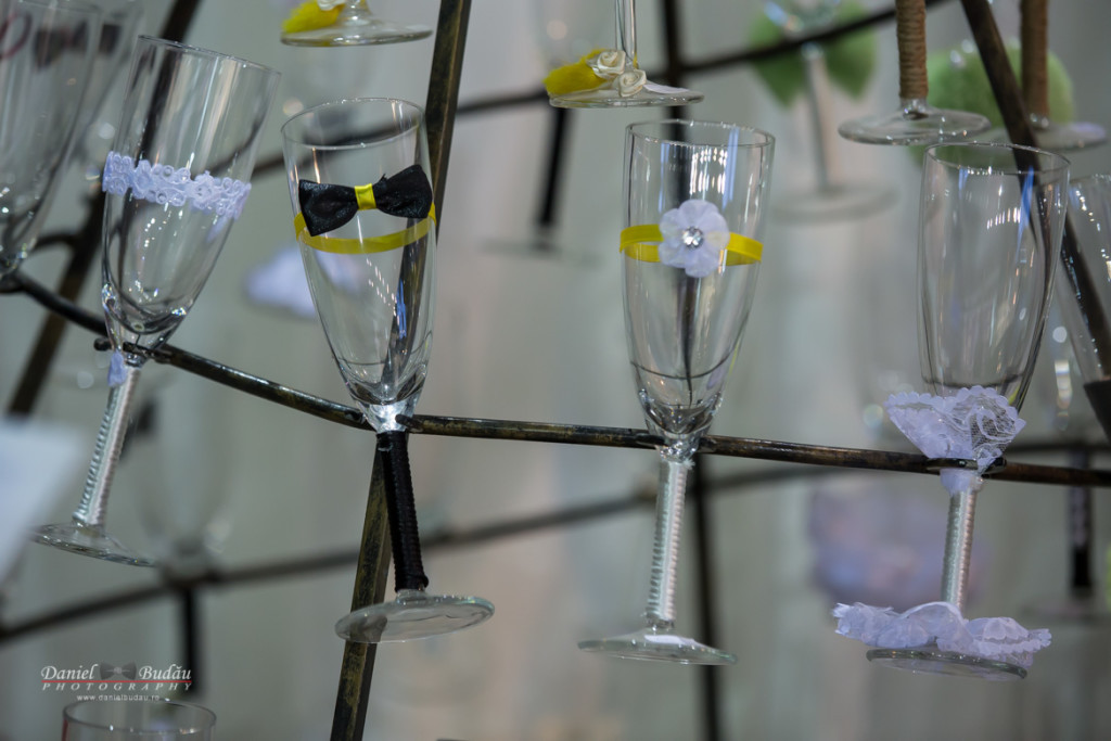 Transilvania wedding fair 2016 Cluj Napoca-16