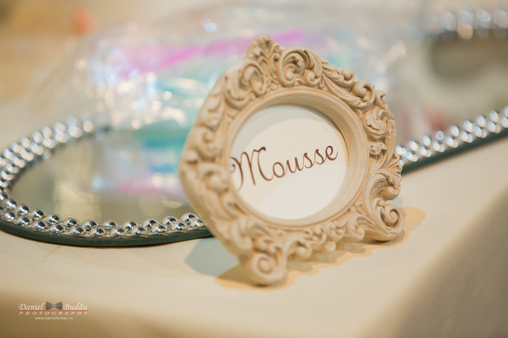 Transilvania wedding fair 2016 Cluj Napoca-20