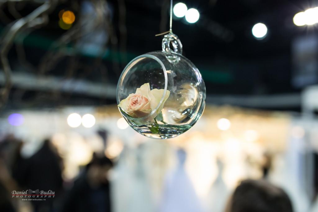 Transilvania wedding fair 2016 Cluj Napoca-98